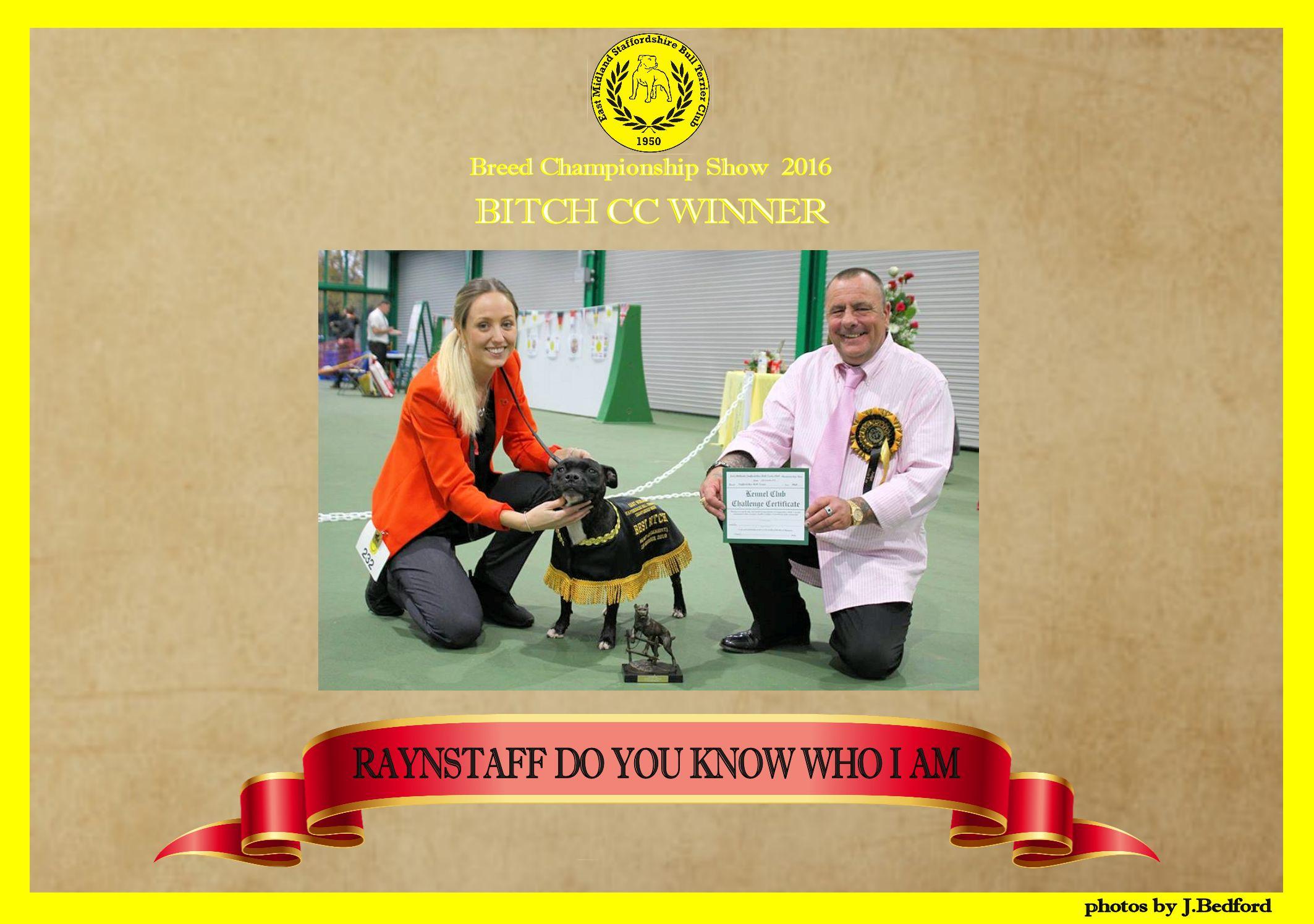 bcc-winner